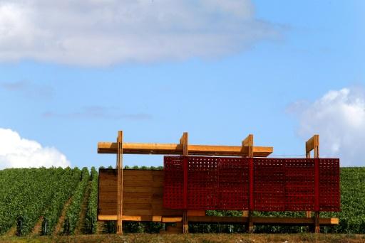 Les loges de vigne font leur retour en Champagne