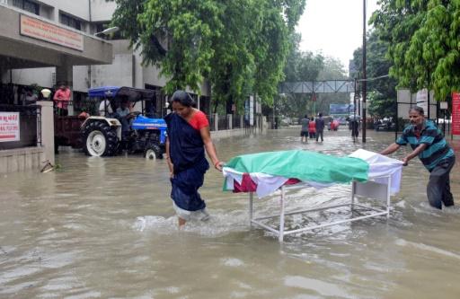Inde: des crocodiles dans la ville