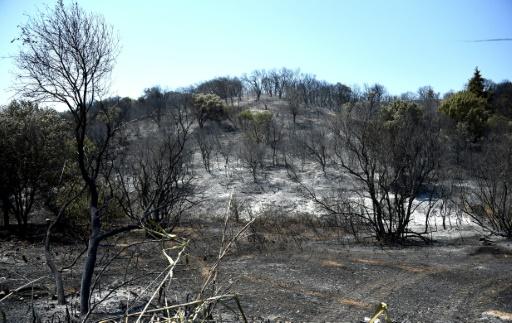 Gard: encore 130 hectares dévorés par le feu à Générac