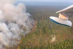 La Taïga sibérienne brûle, la population suffoque