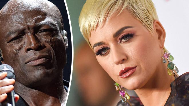 Seal s'attaque à Katy Perry après sa condamnation pour plagiat: