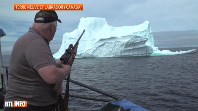 Chasseur d'iceberg, un métier très lucratif: Edward raconte comment il profite de la fonte des glaciers