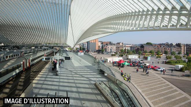 Liège: un jeune Namurois grièvement blessé par le violent coup de poing d'un ami