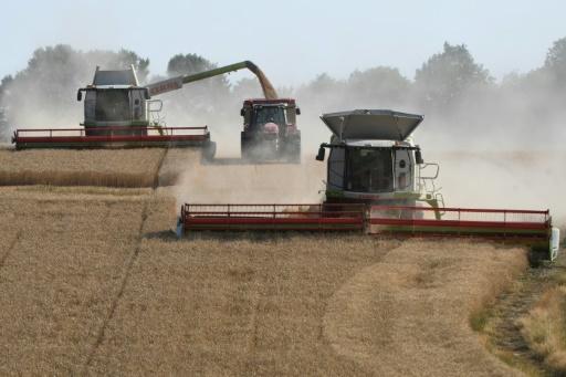 Comment les sols et l'agriculture peuvent aider le climat