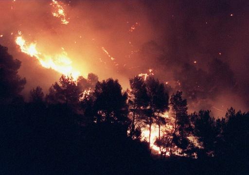 Environ 500 ha de pinèdes détruits par un feu en cours près de Carcassonne