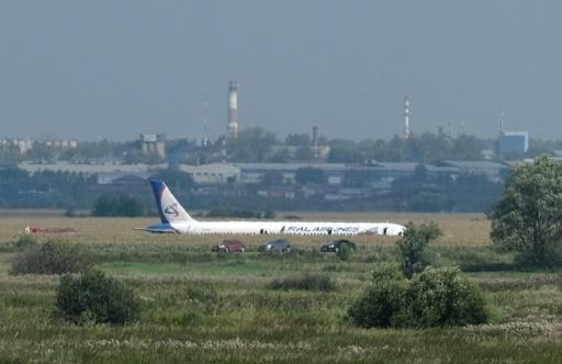 Russie: un Airbus atterrit d'urgence dans un champ de maïs, les pilotes salués en