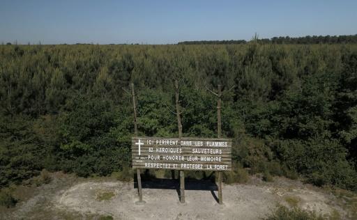 La forêt de Gascogne, entretenue, sûre, mais pas sans vulnérabilités