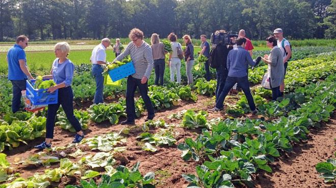 Aux Pays-Bas, des fermes d'un nouveau genre voient le jour: