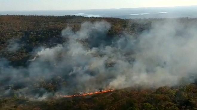 La forêt amazonienne en feu: la déforestation en juillet a été quasiment quatre fois supérieure au même mois de 2018