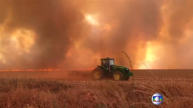 La plus grande forêt du monde est en feu: les incendies en Amazonie ont augmenté de 83% cette année