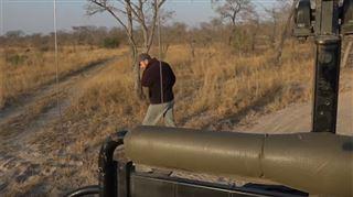 Cet homme cherche des lions pendant un safari- il les trouve beaucoup plus vite que prévu (vidéo) 5