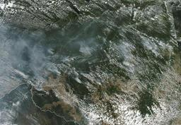 Incendies en Amazonie - Bolsonaro autorise l'envoi de l'armée pour lutter contre les incendies
