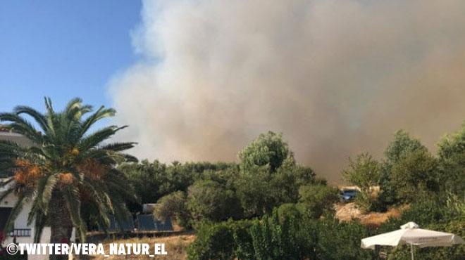 Des centaines de touristes évacués sur une île grecque suite à des feux de forêts