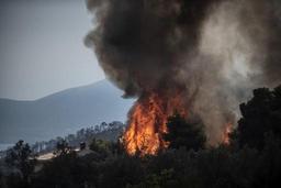 Les incendies se multiplient en Grèce, poussant à l'évacuation d'un millier de touristes
