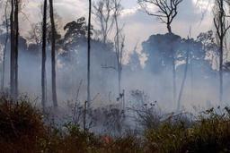 Le secrétaire général de l'ONU appelle à une plus forte mobilisation internationale pour l'Amazonie