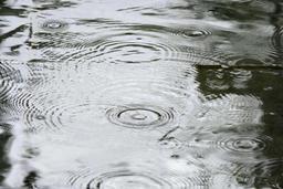 Les précipitations de retour mercredi