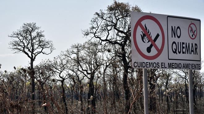 Enfin une réaction concrète du Brésil: les brûlis agricoles sont désormais interdits pour tenter de freiner les incendies