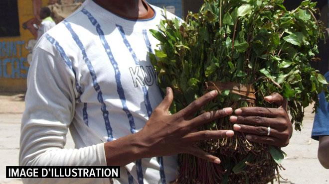 En Ethiopie, Yonas tente de se défaire de son addiction au khat, cette plante euphorisante qui lui permettait de rester éveillé toute la nuit