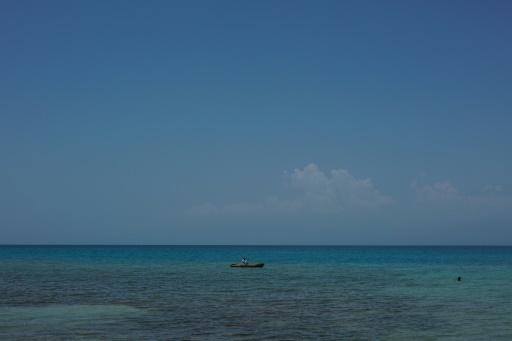 Traité sur la haute mer: peu de progrès, regrettent des ONG