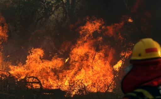 Bolivie: les incendies ont dégradé des sites rupestres