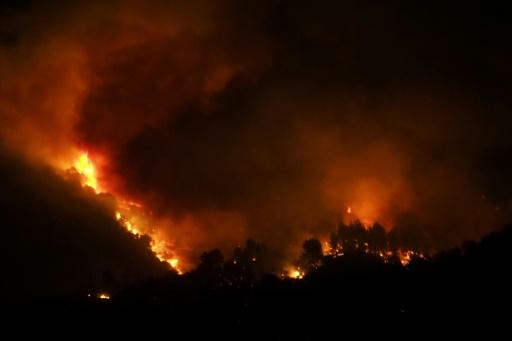 Incendie dans l'Aude: près de 200 hectares de pinède brûlés, des évacuations