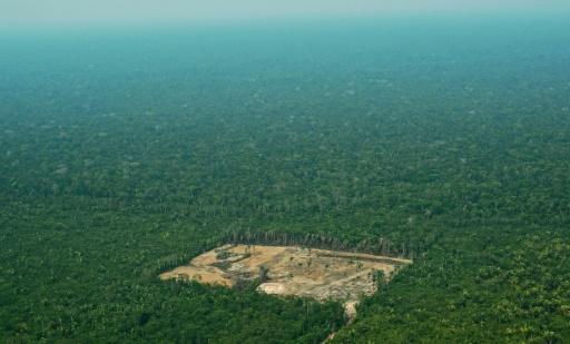 Amazonie: comment l'humanité peut protéger ses