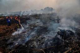 Feux de forêt: la tension monte entre la Malaisie et l'Indonésie
