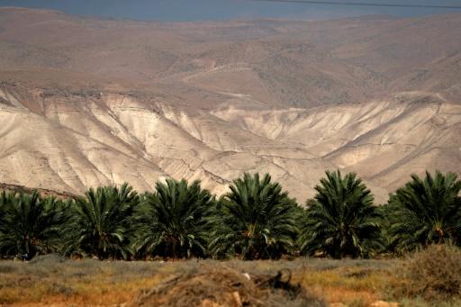 Projet d'annexion d'un pan de la Cisjordanie: réactions indignées dans le monde arabe
