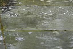 Un temps doux mais de la pluie en matinée