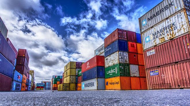 Des ouvriers font une étonnante découverte dans un conteneur au port d'Anvers