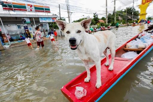 Des inondations en Thaïlande ont fait 32 morts