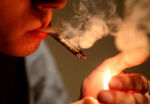 Fumer des joints pour la science, une expérience stupéfiante