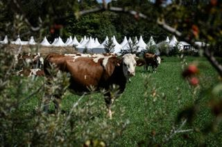 Dans la Drôme, un salon agricole dédié à la transition agro-écologique