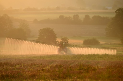 Pesticides: conflits de voisinage et dialogue de sourds