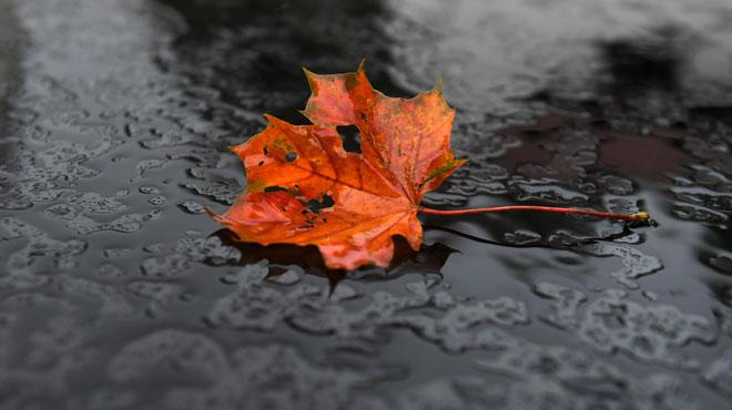 Prévisions météo: pas de doute, l'automne s'installe...
