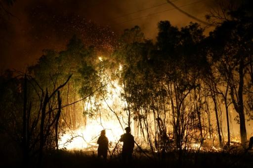Australie: les feux de forêt font leurs premières victimes de la saison
