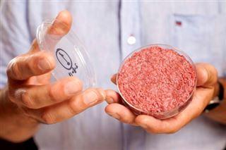 Dans l'espace ou dans nos assiettes, les viandes et poissons artificiels arrivent