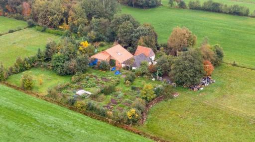 Pays-Bas : découverte d'une famille