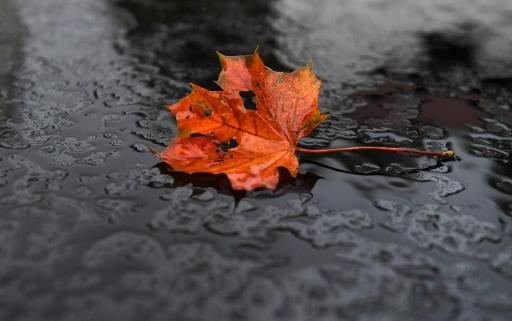 Météo - La pluie s'alanguit sur notre pays