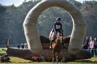 Equitation- le concours complet, populaire et dangereux