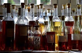 Le cognac vers une nouvelle extension de 3.400 ha de son vignoble