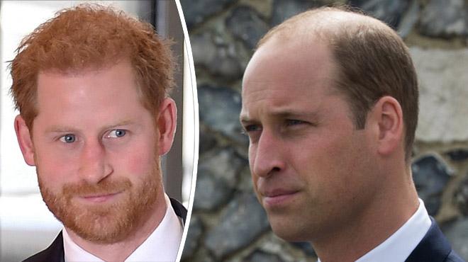 Le prince Harry se confie sur sa relation avec son frère, William: