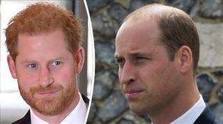 Le prince Harry se confie sur sa relation avec son frère, William- Il y a des mauvais jours