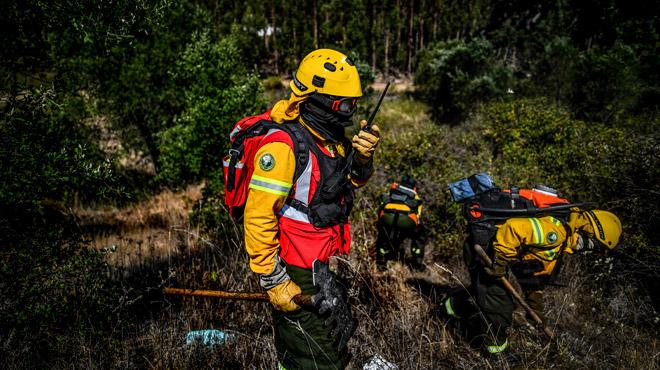 Au Portugal, l'industrie papetière paie 250 pompiers privés pour protéger les forêts d'eucalyptus