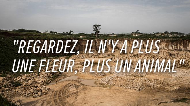 Tristesse d'une population locale au Sénégal: la cimenterie a détruit leur forêt de baobabs (photos)