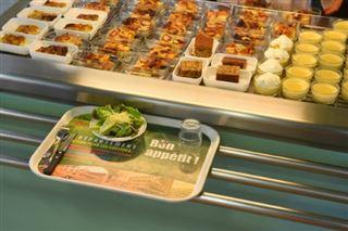 Manger végétarien, une petite révolution silencieuse dans les cantines scolaires