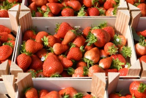 Alimentation: Didier Guillaume demande aux consommateurs de faire un