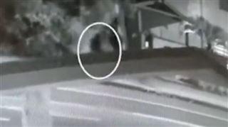 La caméra d'une station-service australienne aurait filmé Theo Hayez- La façon dont il marche, cela lui ressemble