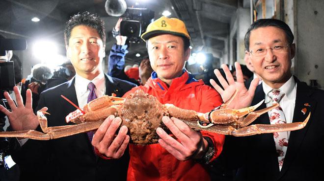 Au Japon, un crabe vendu au prix RECORD de 41.600 euros: mais qu'a-t-il de spécial?
