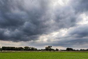 Des précipitations avant le retour d'un temps plus sec ce week-end